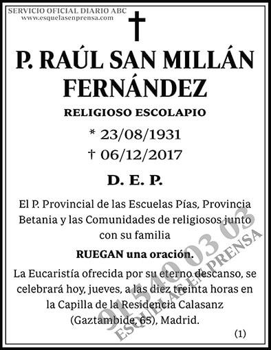 Raúl San Millán Fernández